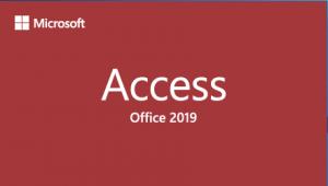 Microsoft Access 2019 검토
